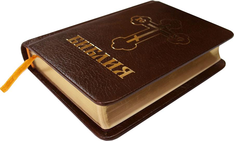 Картинки по запросу библия